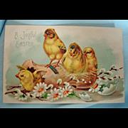Vintage Embossed Easter Postcard - Easter Chicks Post Card