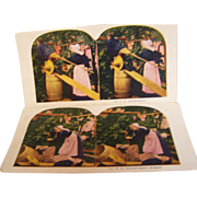 SALE Stereoview Cards Set of 2