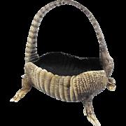 Rare Footed Armadillo Basket