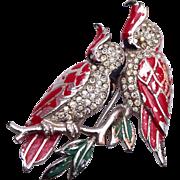 SALE 1937-1949 Marcel Boucher Phrygian Cap Cockatoo Fur Clip