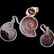 Ammonite Fossil in Sterling Findings - Pendant and Pierced Earrings